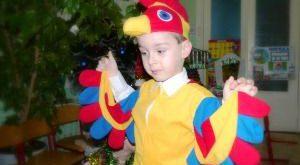 костюм петуха для мальчика своими руками