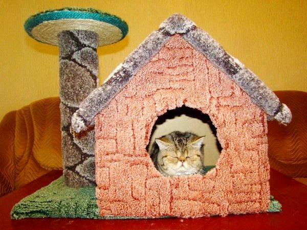 Домик с когтеточкой для кошки фото