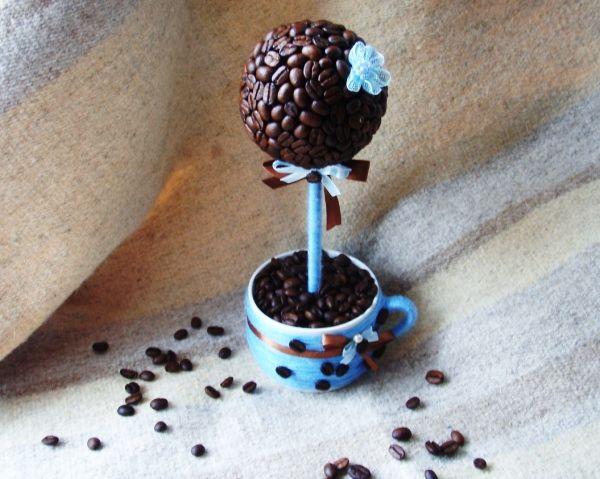 топиарий кофейное дерево фото