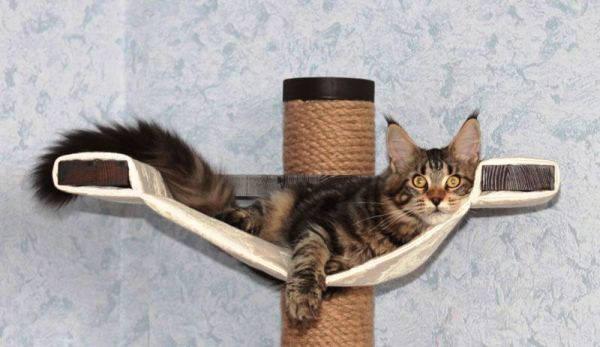 когтеточка для кота своими руками фото